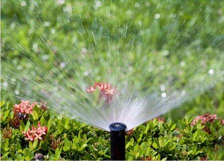 Waterville Irrigation